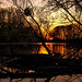 Golden Water | SONY ⍺7III & Canon EF35/2 IS USM [Sigma MC-11]