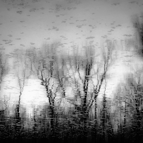 captaindanielwrightwoods d5000 desplainesriver dof nikon abstract blackwhite blackandwhite blur branches bw depthoffield forest landscape monochrome natural noahbw reflection river spring square trees water woods