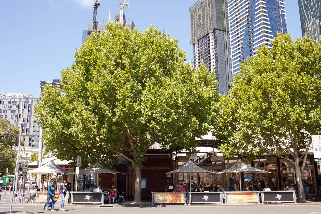 澳大利亞.墨爾本:維多利亞女王市場、Seven Seeds Speciality Coffee、墨爾本大學