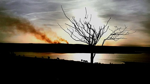 """mobilephone"" samsung landscape sheep silhouette sunset reservoir water ""derwentreservoir"""