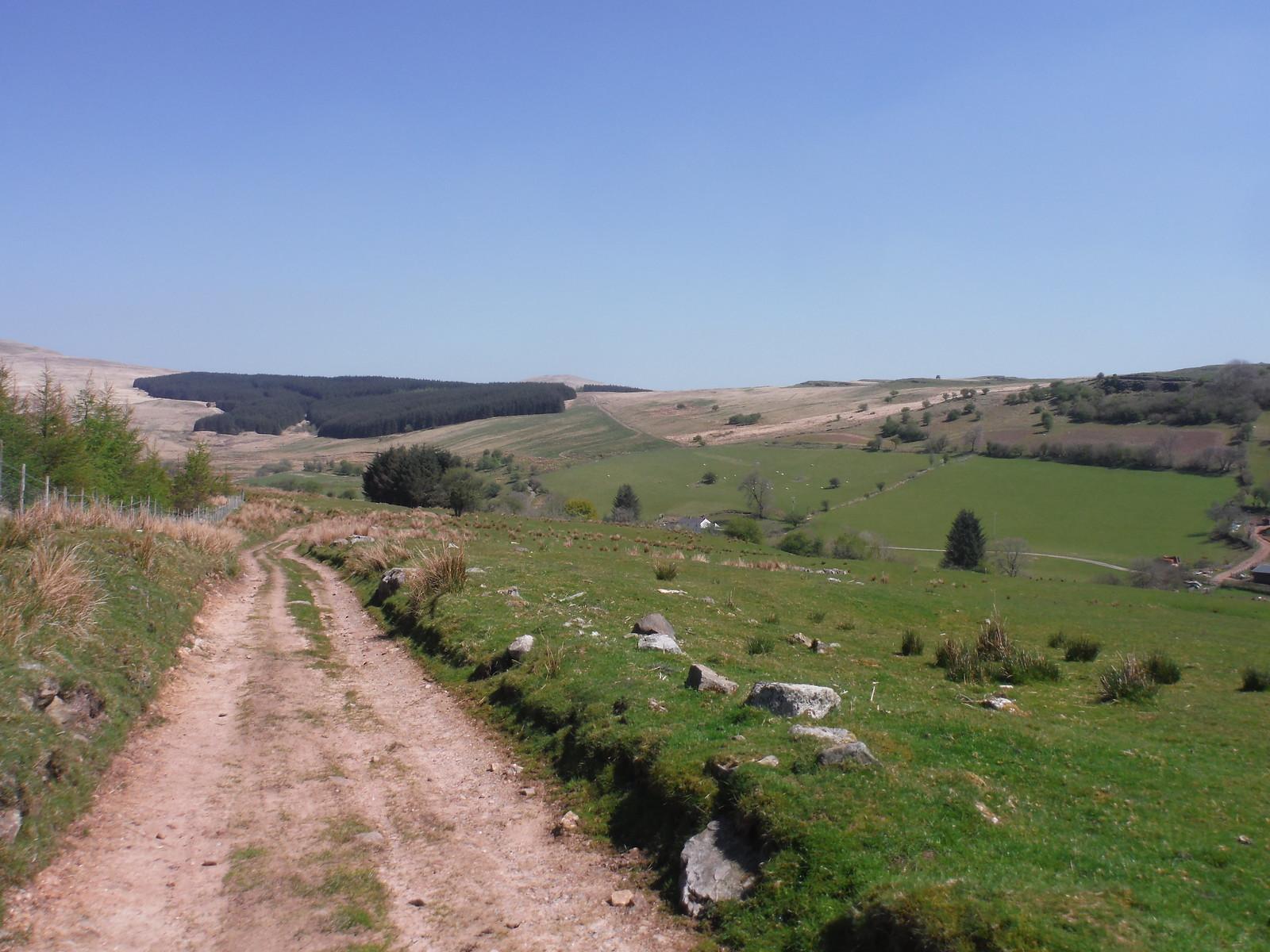 Plantation across Nedd Fechan Valley and Sarn Helen to right of it SWC Walk 307 - Fforest Fawr Traverse (Craig y Nos to Llwyn-y-celyn) [Beacons Way Route]