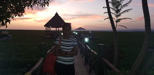 kisumu lake victoria water hyacinth port impala eco lodge pier east africa sunset