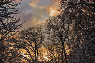 Snowy Morning View_5268 | by smack53
