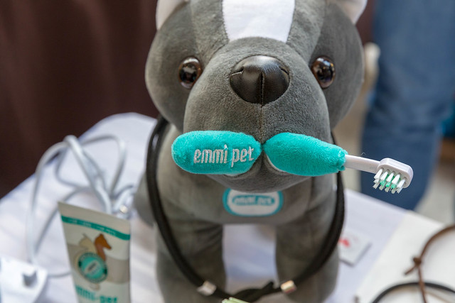 Stuffed animal with an Emmi Pet ultrasonic toothbrush for cleaning pets' teeth, at the dog fair