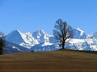 Eiger, Mönch, Jungfrau am 16.02.2019   by Martinus VI