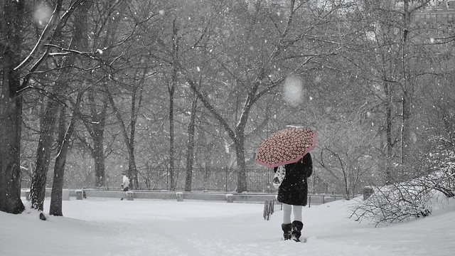 Central  Park with snow - Take with Panasonic gx7 and Panasonic 45-150