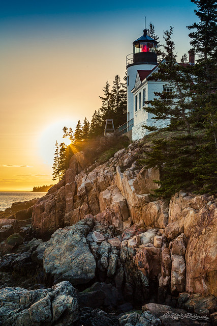 Golden Hour in Acadia