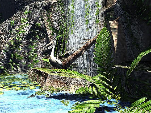 Dethly Island - Sunrise Beach Hangout - Pelican Falls
