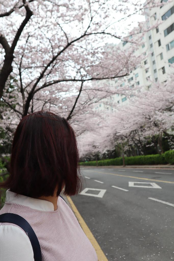 七大界髮廊 (1)
