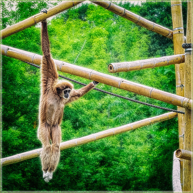 Just hanging around :)