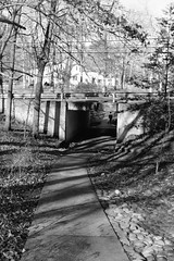 Greenbelt Underpass, 2019