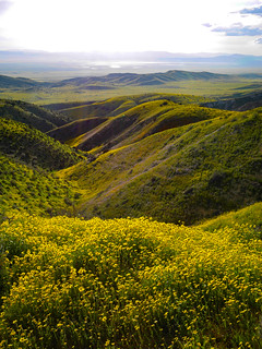 Carrizo Plain from the Temblor Range | by snackronym