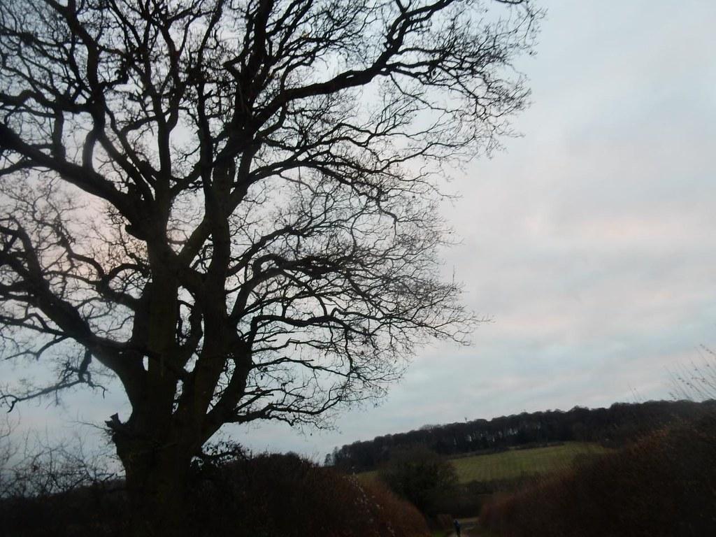 Twilight Little Kimble to Saunderton