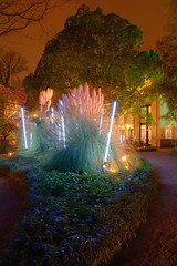 Hortus at night