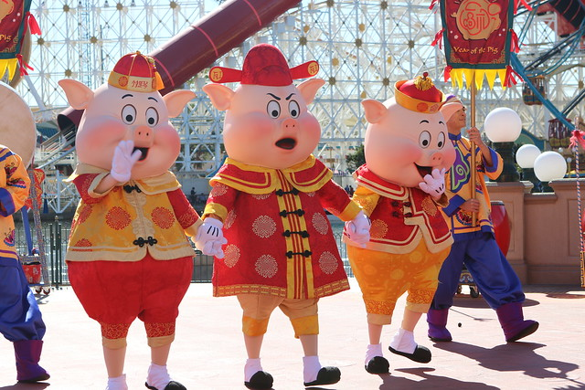 3 little pigs at the Lunar New Year celebration