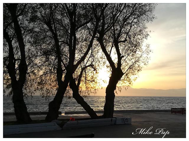 Τα τρία βασικά στοιχεία της Ελλάδας ήλιος θάλασσα και δέντρα!!!!!