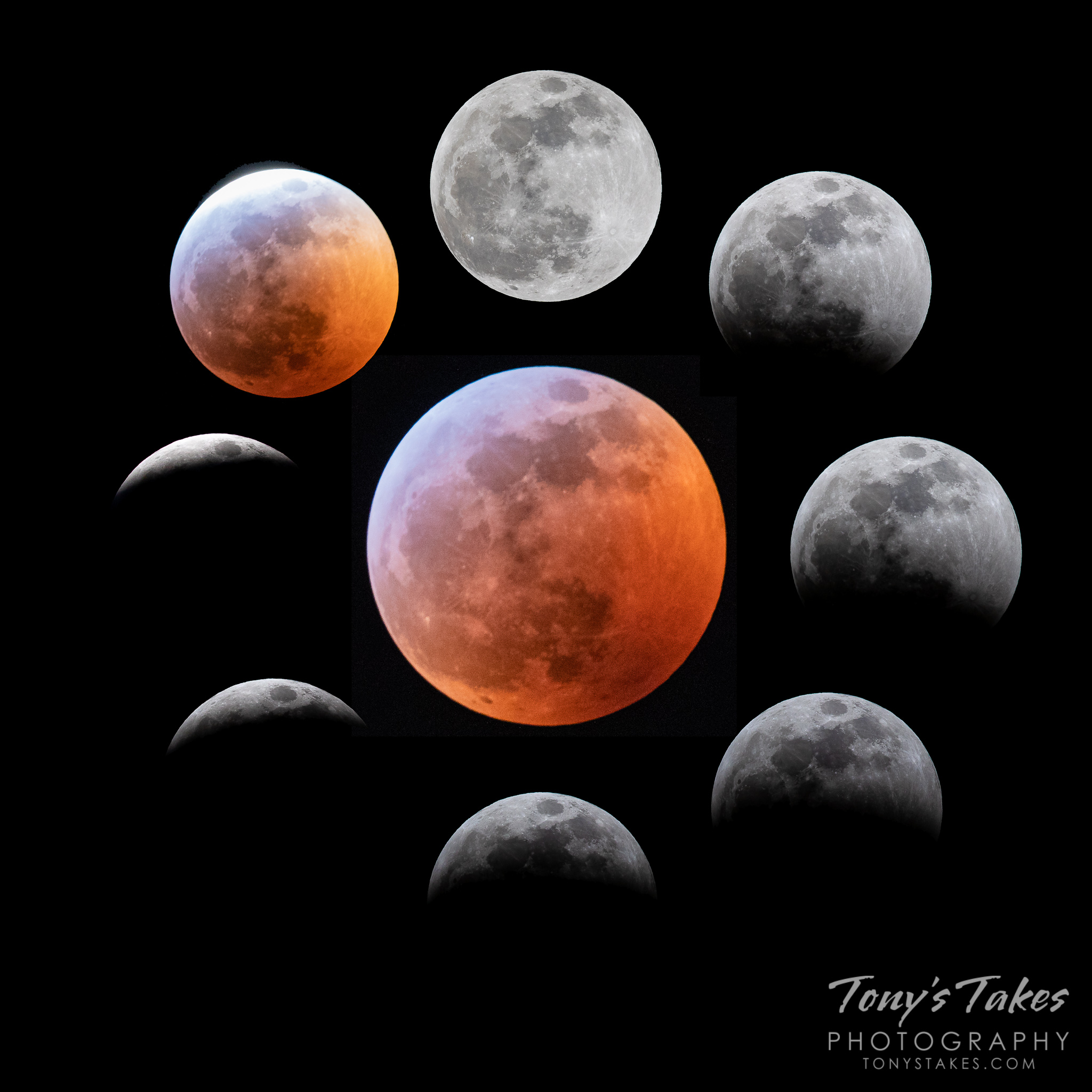 Collage of the phases of the total lunar eclipse as seen from the Denver, Colorado area. (© Tony's Takes)
