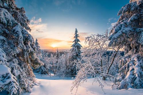 sunset sonnenuntergang winter ruppberg thüringen thuringia landschaft landscape