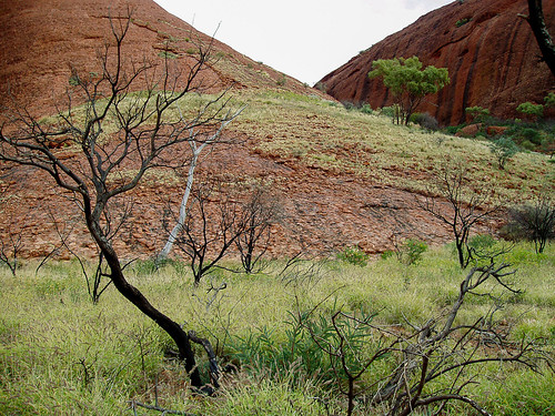 Uluru_19.jpg