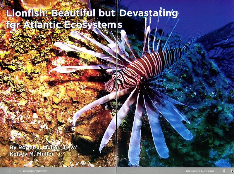 Underwater Naturalist 2