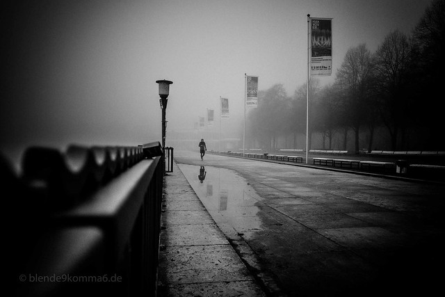 lonely foggy morning