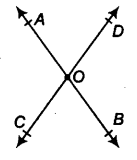 Lines and Angles Class 9 Notes Maths Chapter 4 15