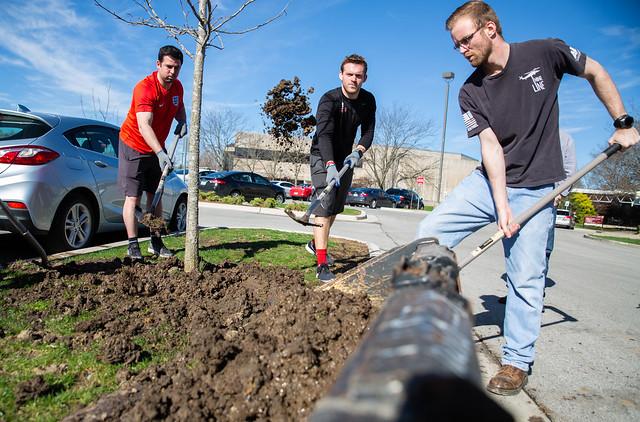 Sustainability Week- tree planting