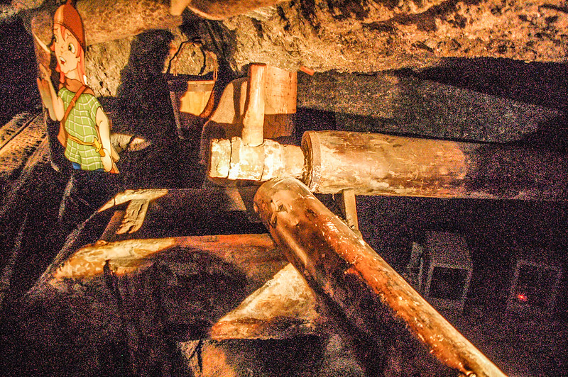 薩爾茲堡鹽礦 (9)