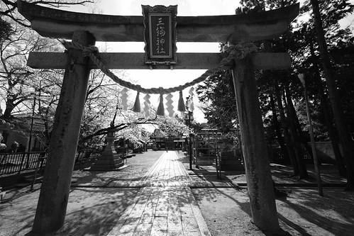 03-04-2019 Tonda, Takatsuki, Osaka pref (11)