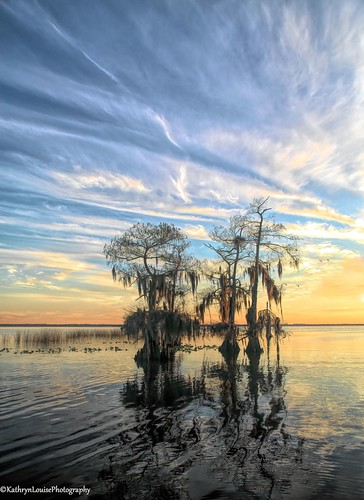 canon florida kathrynlouise landscape seascape seashore waterscape sunrise sunset lakemonroe stjohnsriver enterprise cypresstrees