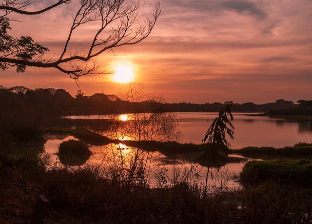 An evening at the Kukkarahalli Lake