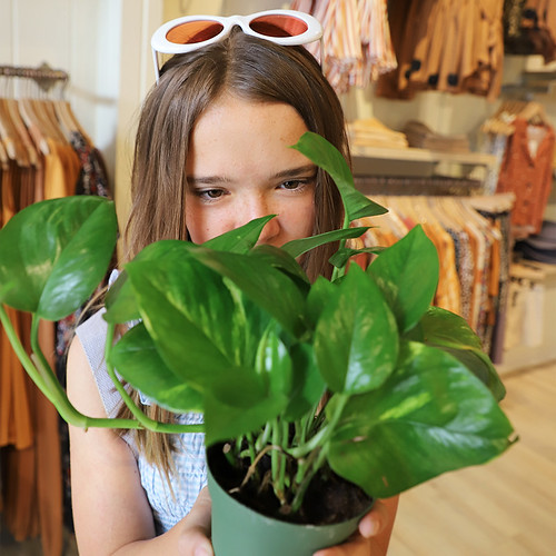 plant-mom | by secret agent josephine