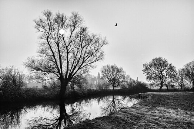 River Cam, Grantchester Meadows, Cambridge