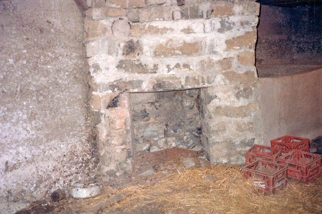 Basement fireplace, Jesse Young's house, Jackson County, Tennessee