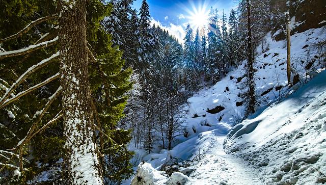 Winter Vista - Tamanawas Falls, Oregon