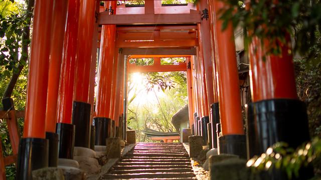 The sun rising at Fushimi Inari