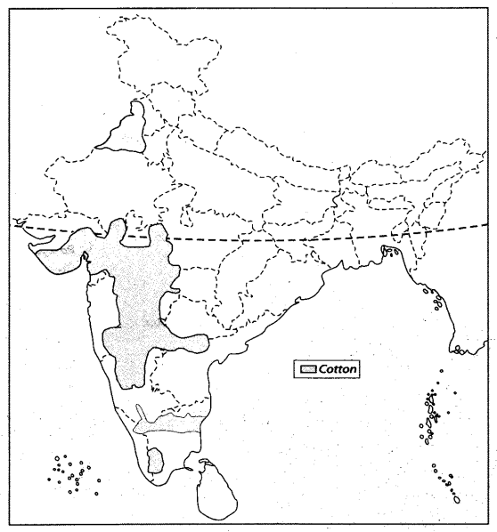 Class 10 Geography Map Work Chapter 4 Agriculture A6