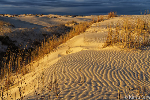 A late afternoon in the sandhills
