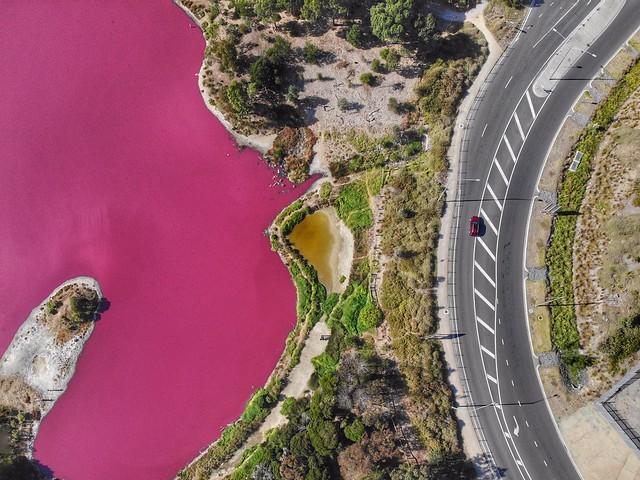 Pink Lake in Westgate park
