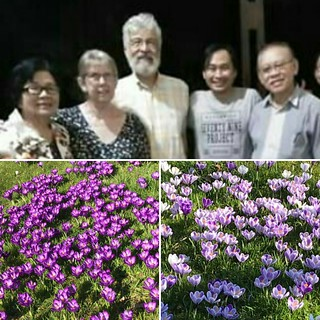 thengs mevrow sylvia and pastor mr de jonge for the new 2019 lovely spring flower from leiden netherland ...nice pic great freesh nature viuw for my morning time ...be blessed 👍👍👍😁😁😁