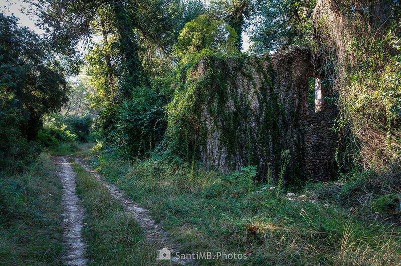 Ruinas cerca de la Font de la Cova de Viladellops
