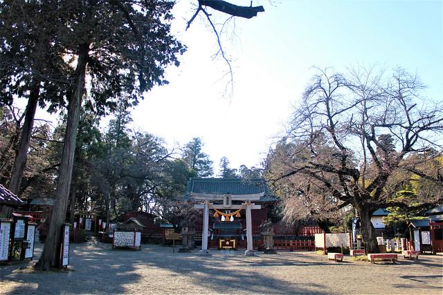 seradatoshogu-gosyuin004