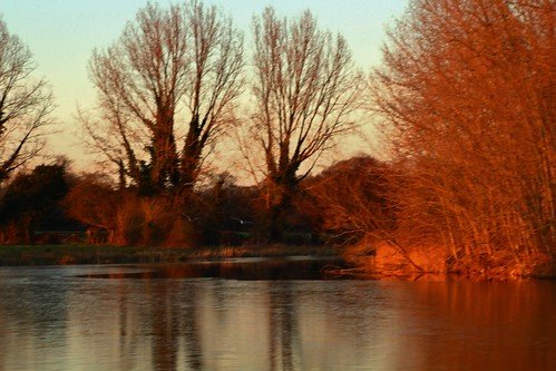 europe england cheshire outdoor nature beauty sunlight simplysuperb sunset trees lake water reflections goldenlight