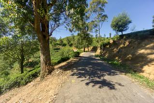 Rendapola-Ambewela Road | by seghal1