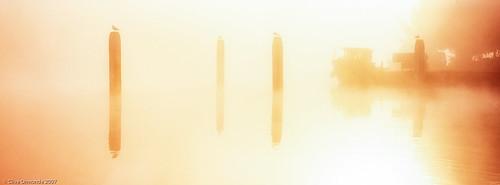 2007 england hambledenlock hasselbladxpanii riverthames blackheadedgull boats fog lock mist post reflections river sunrise hambleden unitedkingdom 35mmtransparencyfilm berkshire
