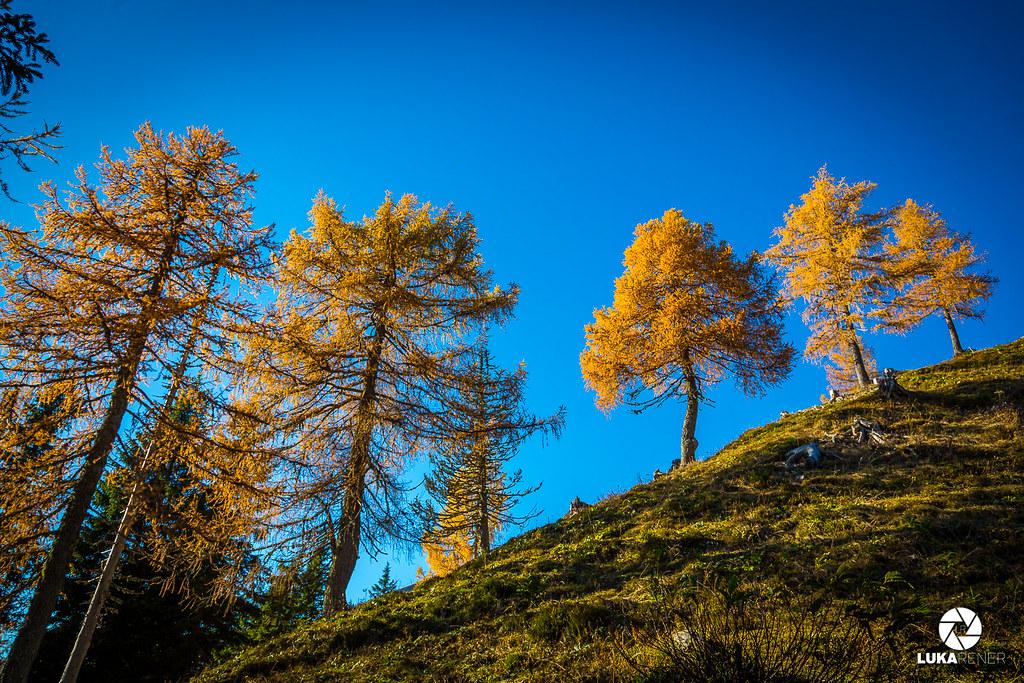 Planina Krstenica