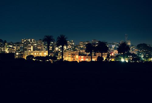 Fort Mason Night Palms | by CopyCatFilms