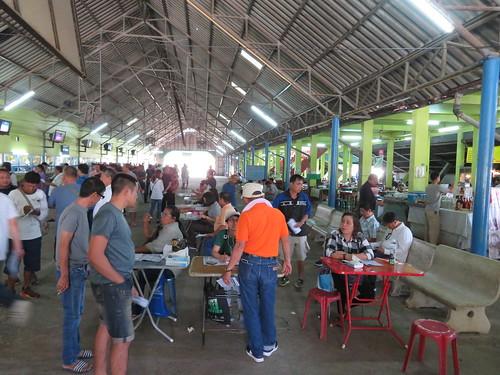 チェンマイ競馬場のスタンドに机を並べる人々
