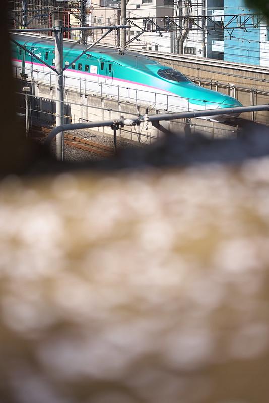 荒川区西日暮里で鉄道と桜を撮る