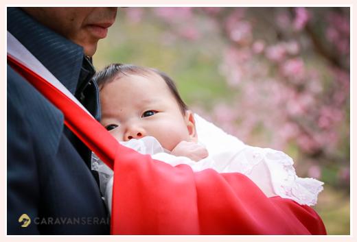 桜の時期の初宮詣り 女の子の赤ちゃん